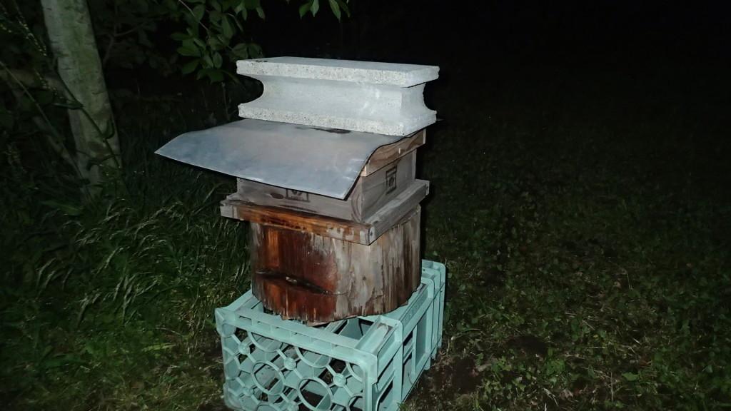 この巣箱は家から見える位置に設置